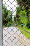 Natura verde dietro il recinto Fotografia Stock Libera da Diritti