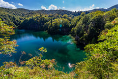 Natura vergine dei laghi parco nazionale, Croazia Plitvice Fotografia Stock