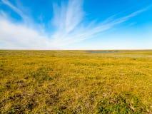 Natura w Dalekiej północy w spadku Obraz Stock