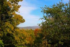 Natura w Dunabogdany Węgry przy jesień słonecznym dniem Obrazy Royalty Free