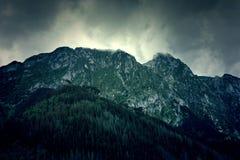 Natura w górach Fotografia Stock