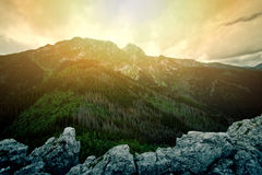 Natura w górach Zdjęcia Royalty Free