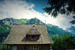 Natura w górach Obraz Royalty Free