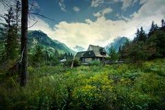 Natura w górach Zdjęcia Stock