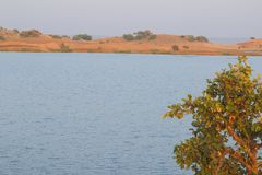 Natura w lesie, mahi tylna woda, banswara, Rajasthan, India Zdjęcia Royalty Free