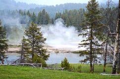 Natura w Yellowstone parku narodowym Fotografia Stock