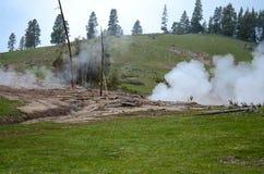 Natura w Yellowstone parku narodowym Obrazy Stock