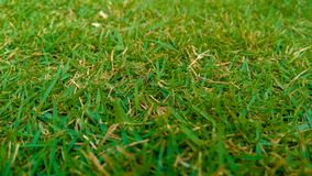 Natura wizerunki HD, niebieskie niebo zdjęcie royalty free