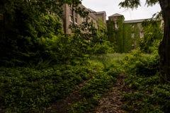 Natura - Zaniechany szpital - Nowy Jork obraz stock