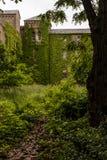 Natura - Zaniechany szpital - Nowy Jork obrazy royalty free