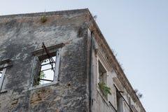 Natura zdaje ponownie zaniechanego rujnującego budynek fotografia royalty free