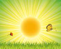 natura zielony plakat Fotografia Stock