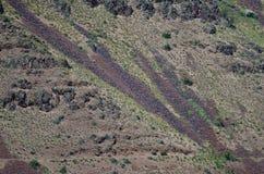 Naturabstrakt begrepp: Ärr av jordskred på lutningarna av helvetekanjonen Royaltyfria Bilder