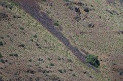 Naturabstrakt begrepp: Ärr av jordskred på lutningarna av helvetekanjonen Arkivbild