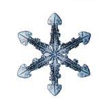 Naturais naturais do macro do floco de neve foto de stock