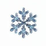 Naturais naturais do macro do floco de neve imagens de stock