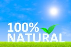 100% natural Fotografia de Stock Royalty Free