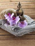 Natural accessories for spa treatment still-life with zen mindset Royalty Free Stock Images