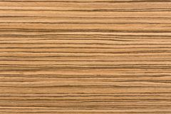 Natural African zingana wood texture. Extremely high resolution photo royalty free stock photo