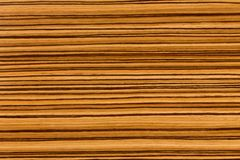 Natural African Zingana zebrano wood texture. Extremely high resolution photo stock photos