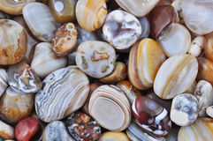 Natural Agate. Various types and color Stock Image