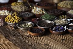 Natural and alternative medicine.  Place for logo and text. Herbs in bowls, mortar and medicine bottles on wooden rustic table Royalty Free Stock Photo