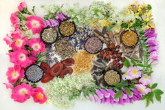 Natural Alternative Medicine Royalty Free Stock Photo