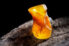 Natural amber. A piece of yellow opaque natural amber on large piece of dark stoned wood. A piece of yellow opaque natural amber, classification color Bastard stock image