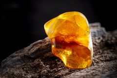 Natural amber. A piece of yellow opaque natural amber on large piece of dark stoned wood. A piece of yellow semi opaque natural amber, classification color royalty free stock images