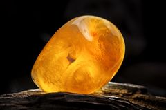 Natural amber. A piece of yellow opaque natural amber on large piece of dark stoned wood. A piece of yellow semi opaque natural amber, classification color royalty free stock image