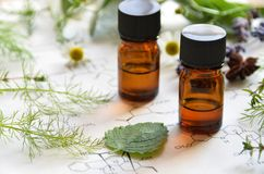 Natural apothecary Stock Photography