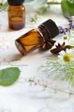 Natural apothecary Royalty Free Stock Photos