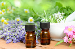 Natural apothecary with essential oils. Natural apothecary with essential oil and fresh herbs in mortar stock image