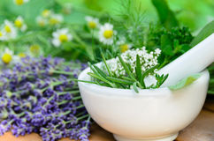 Natural apothecary. With fresh herbs in mortar and pestle Stock Photo