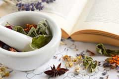 Natural apothecary with herbs and book. Natural apothecary with herbs in mortar and pestle and book Stock Images