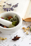 Natural apothecary with herbs and book Stock Photography