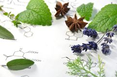 Natural apothecary royalty free stock photography