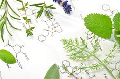 Natural apothecary Stock Images
