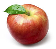 Natural apple Royalty Free Stock Photography