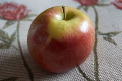 Single natural apple in spain royalty free stock image