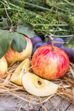 Natural apples and plums on the table Royalty Free Stock Images