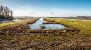 Natural area in a redesigned Dutch polder. At the end of a sunny day in the beginning of the spring season Stock Image