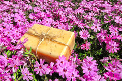 Natural Aromatherapy Bath Soap Bar on Pink Flowers stock photos