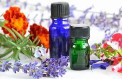 Natural aromatherapy with herbs Stock Photo