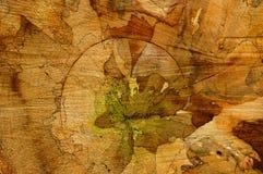 Natural art Royalty Free Stock Image