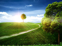 Free Natural Art Backgrounds Royalty Free Stock Photos - 26212978