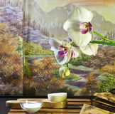 Natural asian beauty products. With orchid, autumn scenery, facial brush and white mask Stock Photos