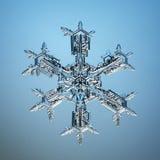 Natural atual macro dos cristais de gelo do floco de neve Fotos de Stock