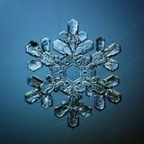 Natural atual macro dos cristais de gelo do floco de neve Imagens de Stock Royalty Free