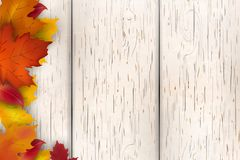 Natural Autumn background design. Autumn leaf fall, autumnal falling leaves on white wooden background. Vector autumnal Stock Photo